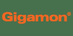Gigamon